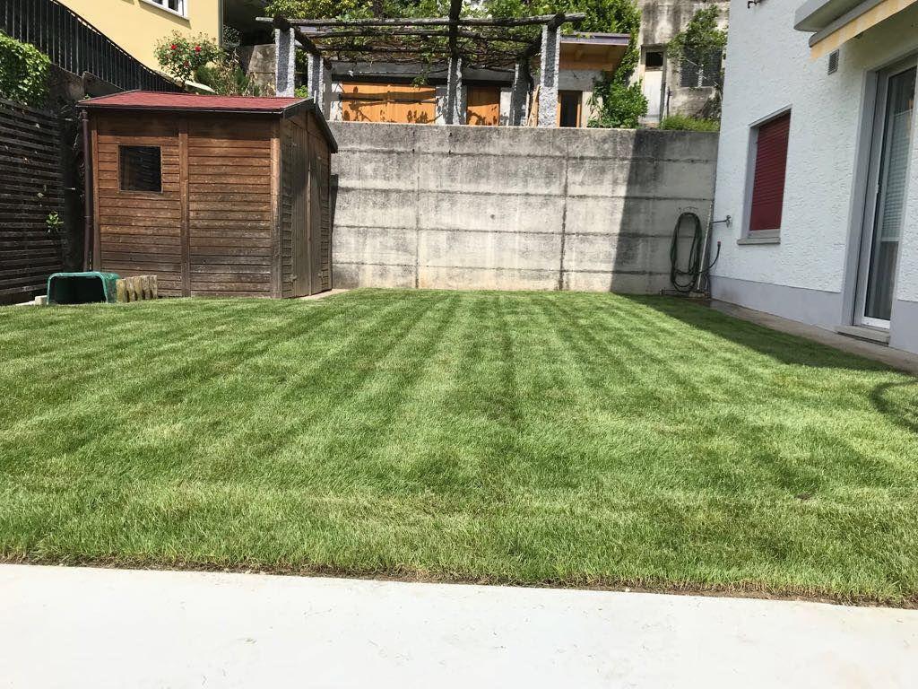 Cavadini baudino sagl manutenzione e costruzione giardini for Costruzione giardini